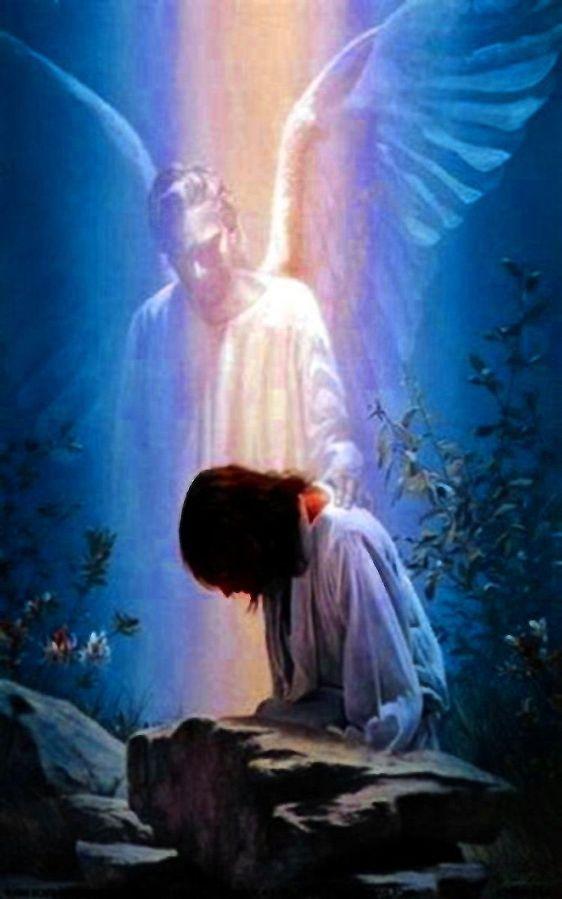 FEAR NOT: God's EverlastingReassurance
